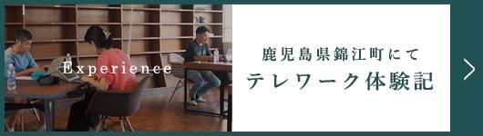 錦江町テレワーク体験記
